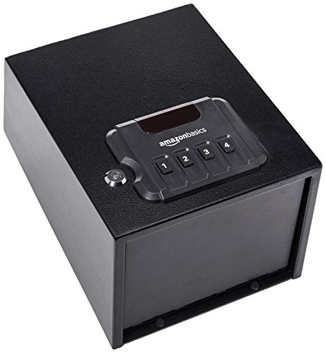 best gun safe for vechicle