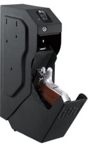 search in title: best gun safe for home